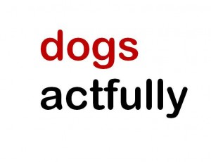 dogs actfully